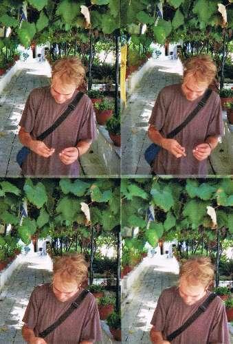 Ein Lomo Bild. Vier Bilder auf einem Bild. Ein blonder Mann in einem Weingarten.